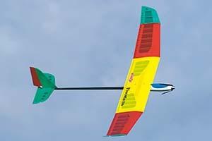 Pilot Pimenta 2m Glider