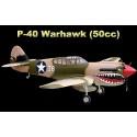 ESM Model P-40 Warhawk 50cc Scale ARF